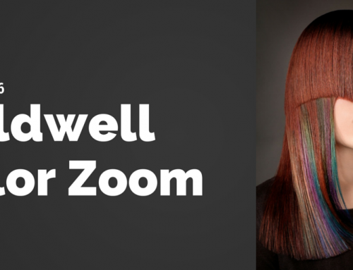 Color Zoom Global Event 2016